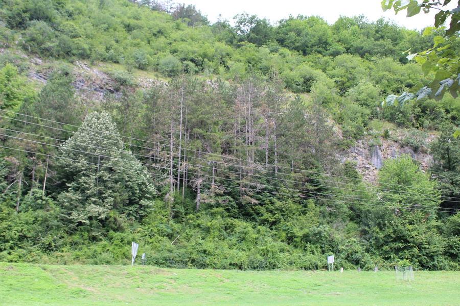 Название: Природа Черногория.JPG Просмотры: 60  Размер: 281.1 Кб
