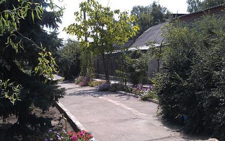 Нажмите на изображение для увеличения Название: Внутреннй двор зоопарка.jpg Просмотры: 397 Размер:101.3 Кб ID:14412