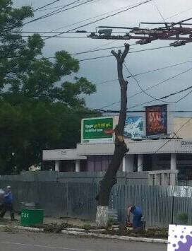 Название: Дерево паблик Приднестровцы.jpg Просмотры: 755  Размер: 35.0 Кб