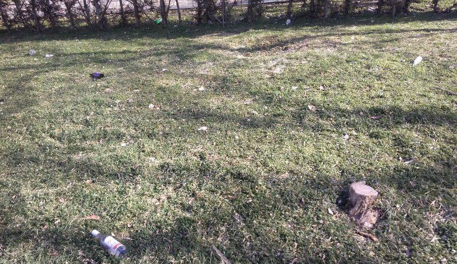 Название: Мусор в парке Тирасполя Жертвам Фашизма.jpg Просмотры: 71  Размер: 204.1 Кб