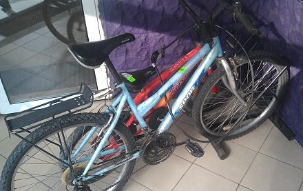 Нажмите на изображение для увеличения Название: Женские велосипеды.jpg Просмотры: 340 Размер:98.1 Кб ID:17028