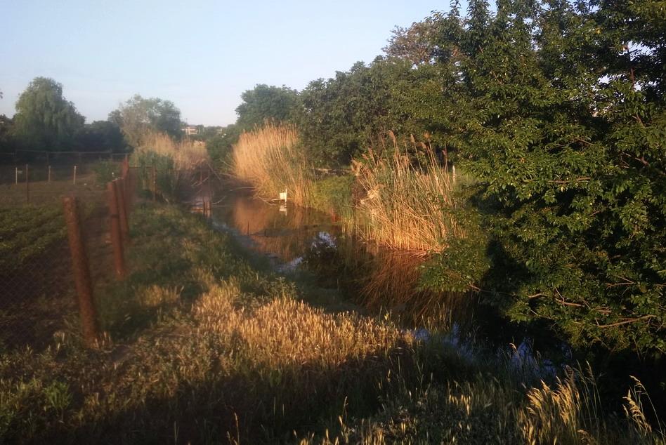 Название: Ближний хутор - ручей у мостика 2.jpg Просмотры: 185  Размер: 227.0 Кб