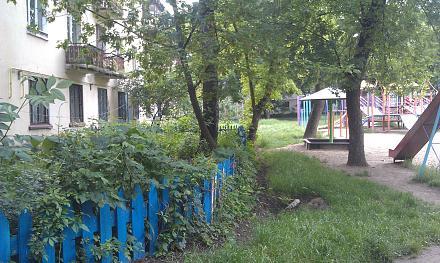 Нажмите на изображение для увеличения Название: палисадник у детской площадки.jpg Просмотры: 185 Размер:143.0 Кб ID:18872
