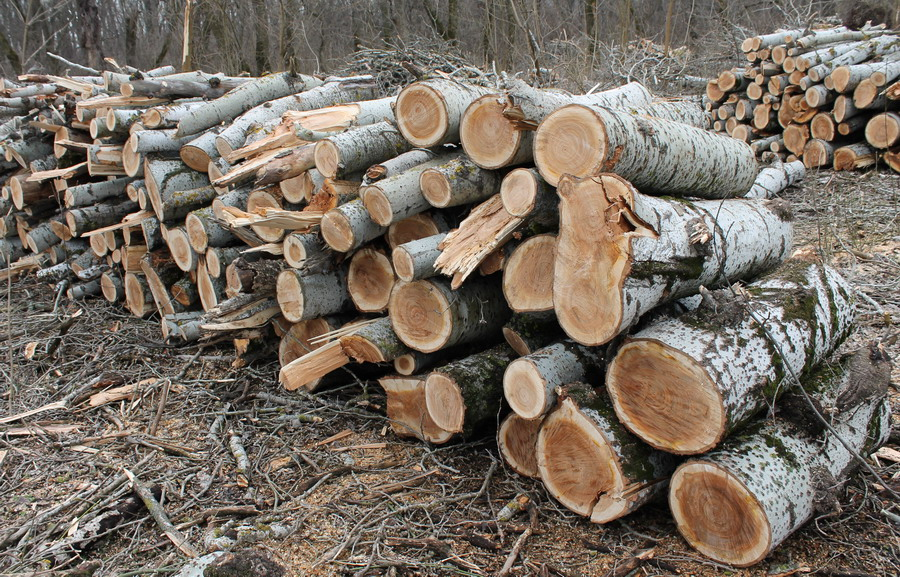 Название: 7 - дрова с Терновки.JPG Просмотры: 207  Размер: 309.7 Кб