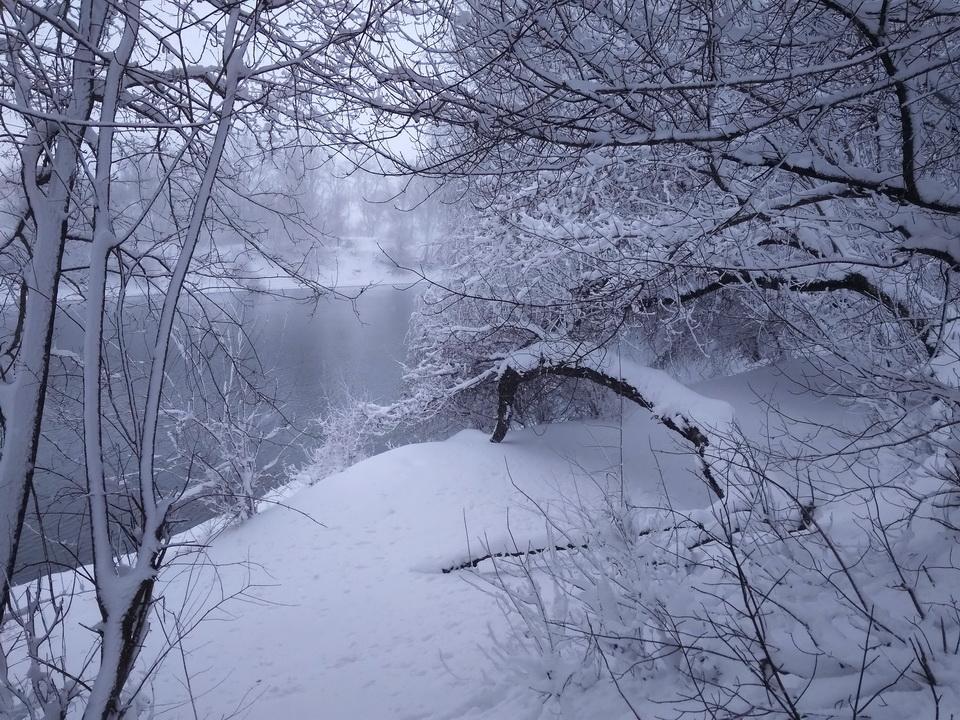 Название: Берег Днестра зимой 2021.jpg Просмотры: 122  Размер: 367.0 Кб