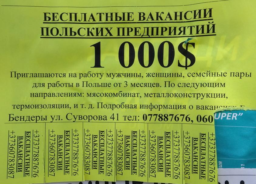 Название: 1000 долларов зарплата в Польше.jpg Просмотры: 201  Размер: 195.1 Кб