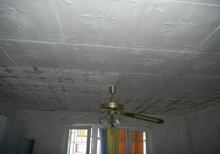 Нажмите на изображение для увеличения Название: Потолок до ремонта - 1.jpg Просмотры: 579 Размер:55.8 Кб ID:11411