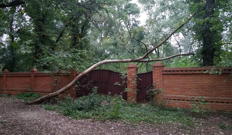 Название: Красный забор с веткой.jpg Просмотры: 63  Размер: 198.6 Кб