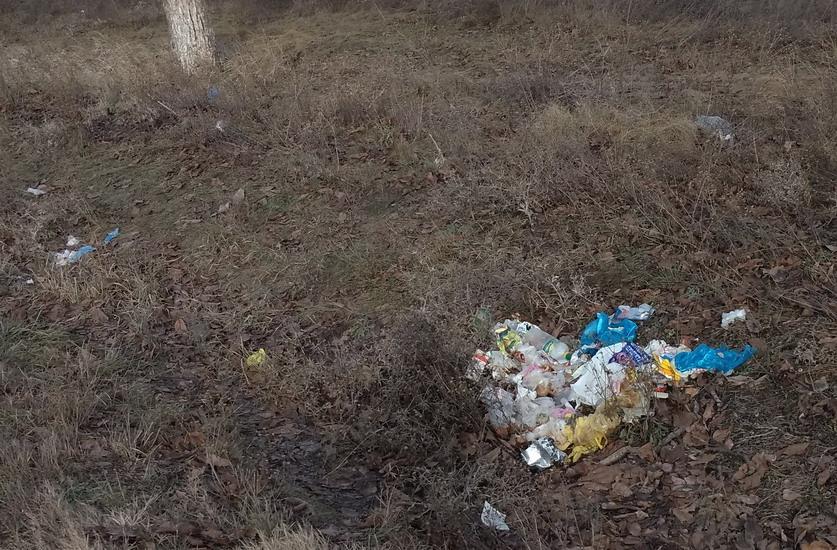 Название: мусор на обочине.jpg Просмотры: 75  Размер: 232.2 Кб