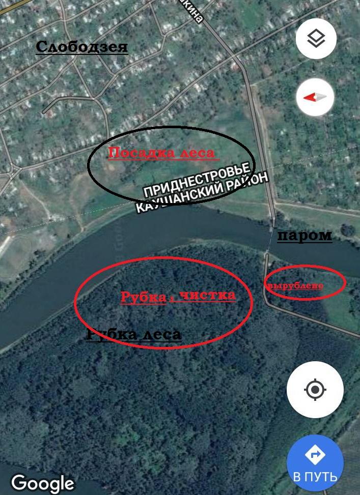 Название: Вырубка леса напротив стадиона в Слободзее.jpg Просмотры: 200  Размер: 248.8 Кб