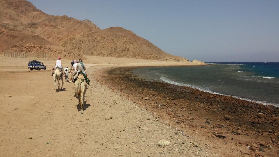 Название: Путешествие по пустыне и беергу моря.jpg Просмотры: 1051  Размер: 174.3 Кб