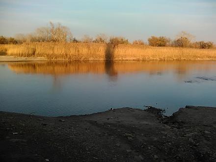 Нажмите на изображение для увеличения Название: Река Северский Донец.jpg Просмотры: 650 Размер:68.2 Кб ID:17263
