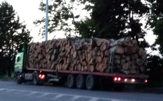 Название: Вывоз леса с Приднестровья.jpg Просмотры: 1696  Размер: 70.1 Кб