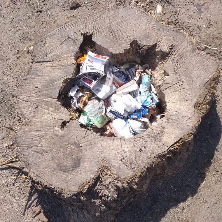Название: Тирасполь пень-мусорка.jpg Просмотры: 106  Размер: 180.1 Кб