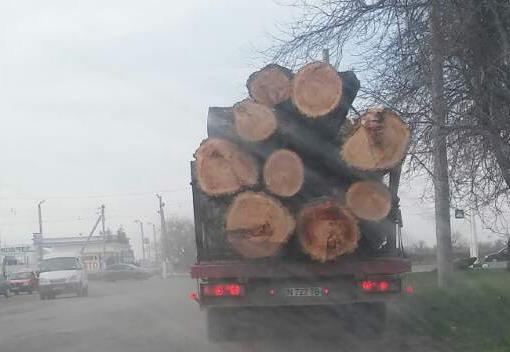 Название: Фура с древесиной из Терновки.jpg Просмотры: 70  Размер: 38.7 Кб