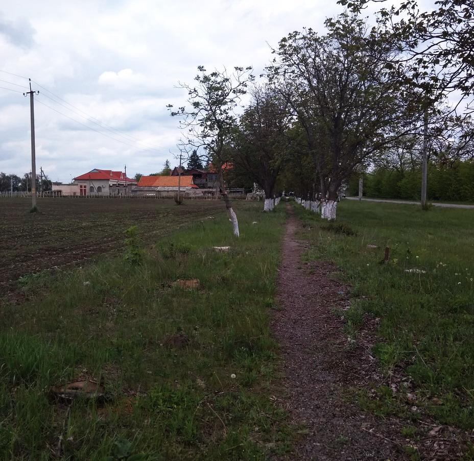 Название: Дорога Фоишор-Терновка.jpg Просмотры: 4  Размер: 310.6 Кб