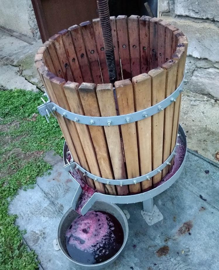 Название: выжим виноградного сока.jpg Просмотры: 239  Размер: 306.7 Кб