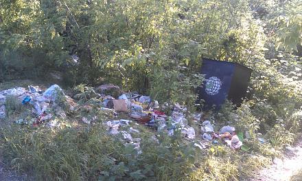 Нажмите на изображение для увеличения Название: Упавший мусоросборник.jpg Просмотры: 334 Размер:150.8 Кб ID:21791
