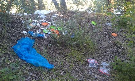 Нажмите на изображение для увеличения Название: Берег Днестра в Тирасполе - мусор.jpg Просмотры: 305 Размер:152.8 Кб ID:21793
