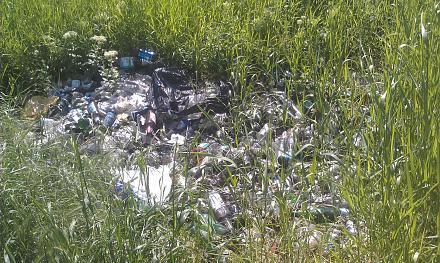 Нажмите на изображение для увеличения Название: Субботник 20 мая - куча мусора.jpg Просмотры: 314 Размер:193.2 Кб ID:21978
