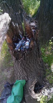 Нажмите на изображение для увеличения Название: Сломанное дерево с бутылками.jpg Просмотры: 290 Размер:107.0 Кб ID:21981