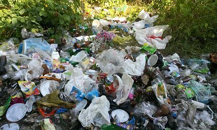 Нажмите на изображение для увеличения Название: Кучи мусора на берегу Днестра - 2015.jpg Просмотры: 259 Размер:143.3 Кб ID:21159