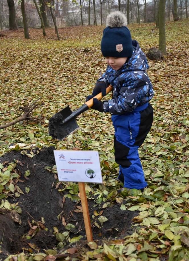 Название: Ребенок комает яму для саженца.jpg Просмотры: 56  Размер: 263.6 Кб