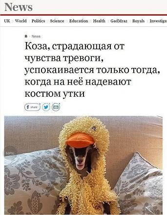 Нажмите на изображение для увеличения Название: тревожная коза.jpg Просмотры: 170 Размер:72.7 Кб ID:22774