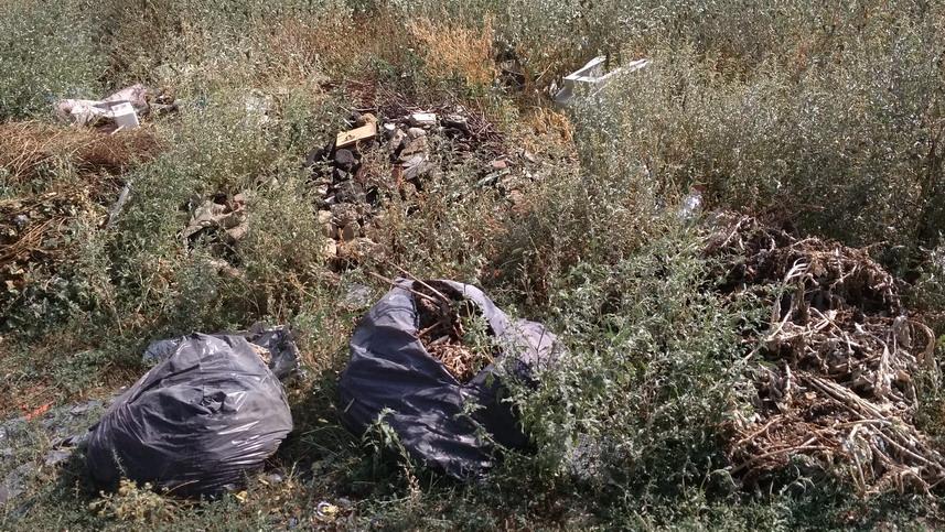 Название: Гаражи в Тирасполе - мусор.jpg Просмотры: 536  Размер: 256.9 Кб