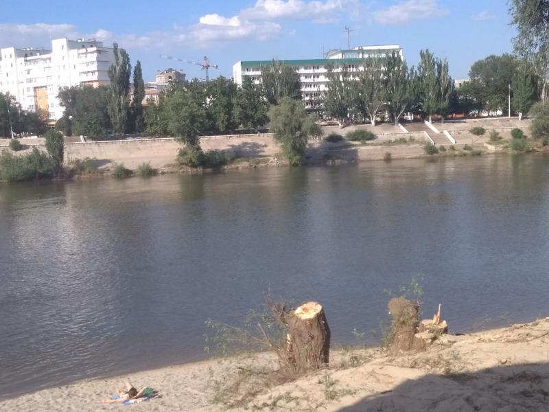 Название: Тираспольский городской пляж  и пни.jpg Просмотры: 20  Размер: 132.7 Кб