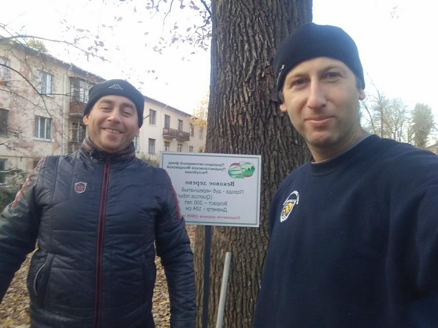 Название: Дмитрий Волосюк и Борис Эфрос - Дуб Красные казармы.jpg Просмотры: 128  Размер: 139.4 Кб