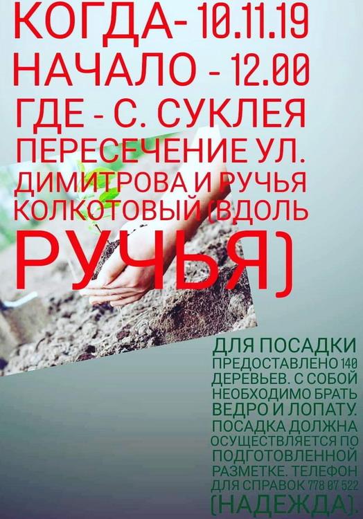 Название: Посадка саженцев ручей Светлый - Суклея.jpg Просмотры: 32  Размер: 128.5 Кб