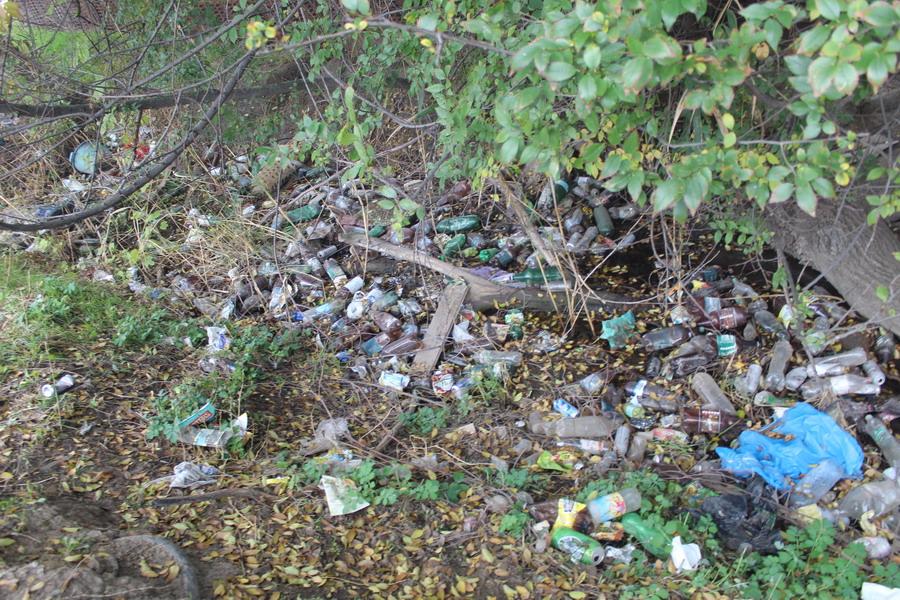 Название: 1 - был мусор до уборки.JPG Просмотры: 253  Размер: 306.3 Кб