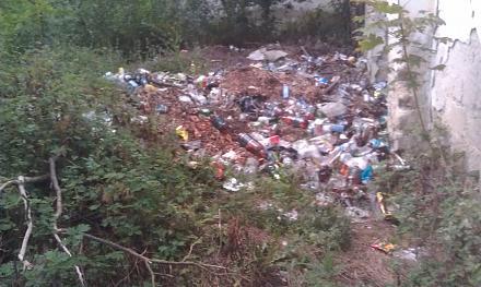 Нажмите на изображение для увеличения Название: Парк Родина 23 июля 2017 - мусор.jpg Просмотры: 154 Размер:95.7 Кб ID:22798