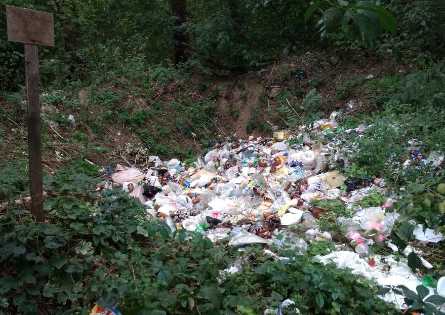 Название: Компостная яма с мусором.jpg Просмотры: 92  Размер: 269.1 Кб