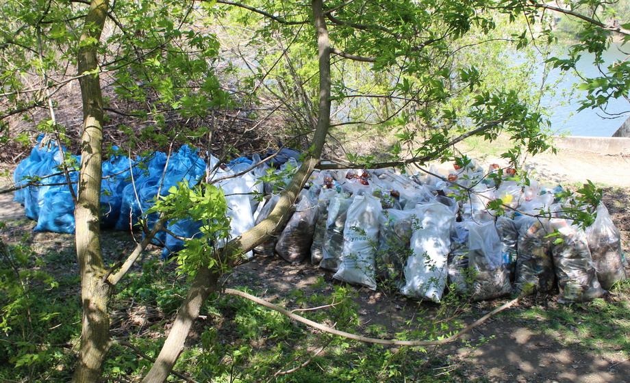Название: Собранный мусор на субботнике.JPG Просмотры: 40  Размер: 325.7 Кб