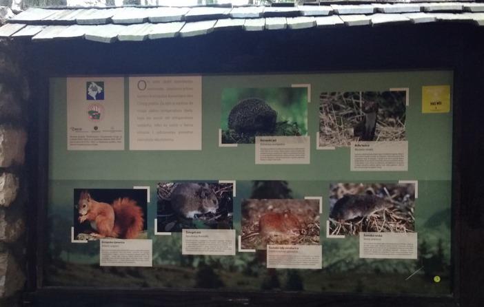 Название: Редкие животные в парке.jpg Просмотры: 516  Размер: 81.3 Кб