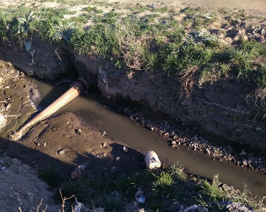 Название: Суклея - протекает труба в ручей.jpg Просмотры: 554  Размер: 326.9 Кб