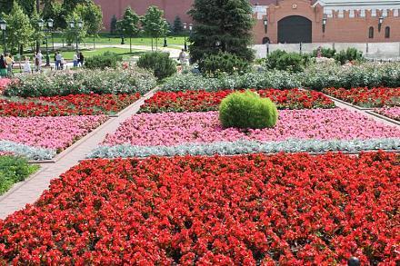 Нажмите на изображение для увеличения Название: Александровский сад.jpg Просмотры: 308 Размер:151.2 Кб ID:14226