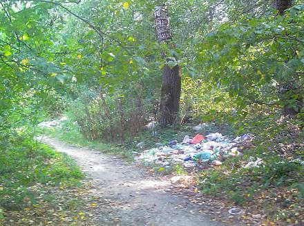 Нажмите на изображение для увеличения Название: Мусор в лесу.jpg Просмотры: 467 Размер:83.8 Кб ID:12392