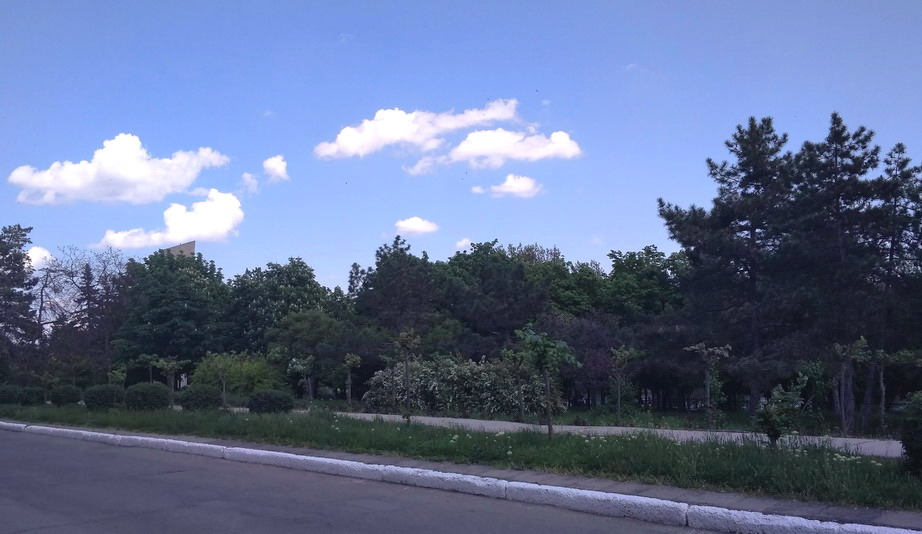 Название: Набарежная Бендеры - Молодые деревья.jpg Просмотры: 44  Размер: 126.7 Кб