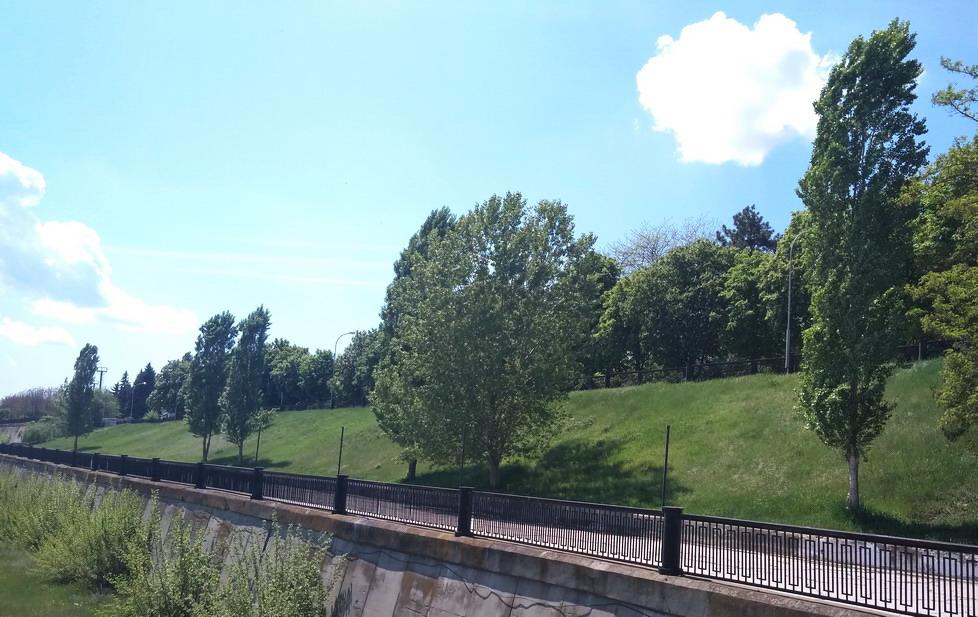 Название: Нижний ярус с деревьями - набережная Бендеры.jpg Просмотры: 595  Размер: 197.1 Кб