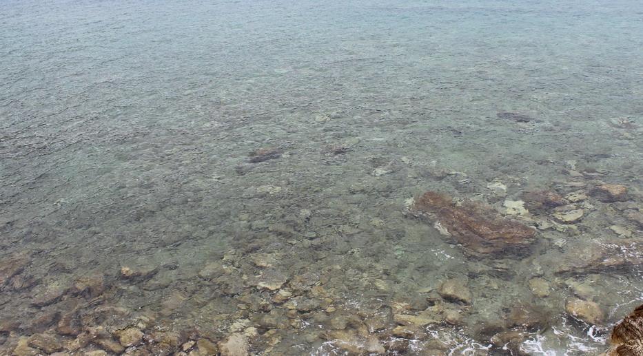 Название: Дно моря в Черногории - Будва.JPG Просмотры: 138  Размер: 208.0 Кб