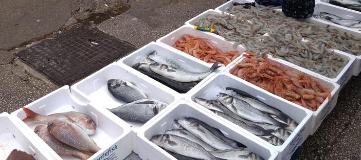Название: Свежая рыба в Будве.jpg Просмотры: 131  Размер: 103.9 Кб